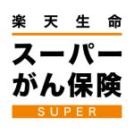 rakuten_supergan
