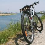 サイクリング関連協会で加入する自転車保険